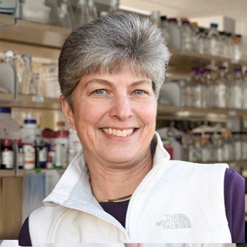 Karen Copeland, PhD